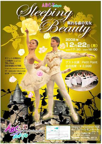 Sleepingbeautyflyerweb
